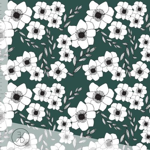 ED 229 Anemone - Evergreen